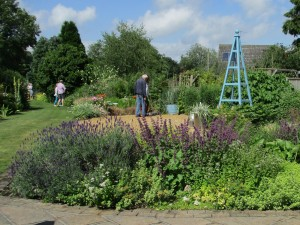 Looking across the herb boarder from the terrace.